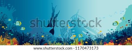 underwater panoramic marine