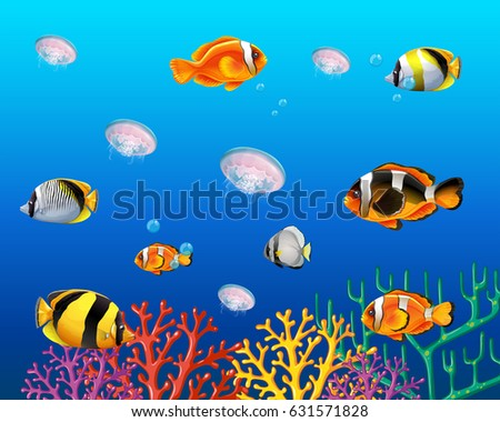 underwater scene with fish