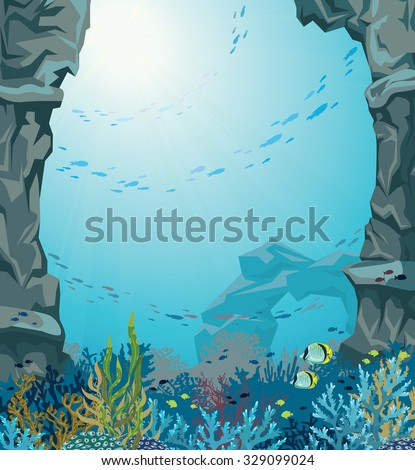 underwater sea cave and coral