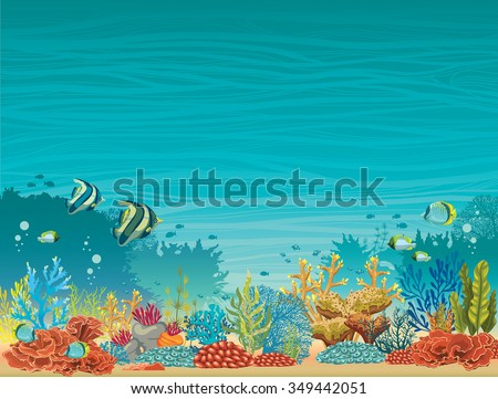underwater seascape   colorful