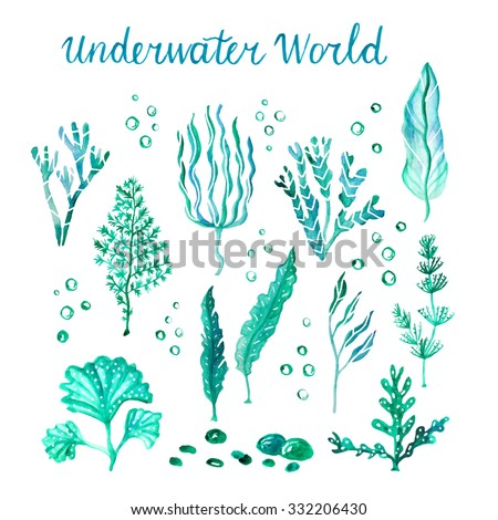 underwater watercolor algae set