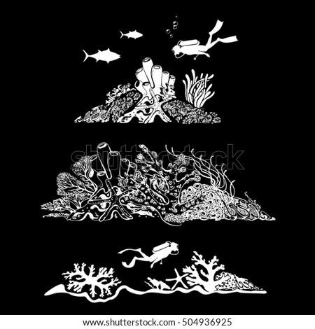 underwater world scuba diver