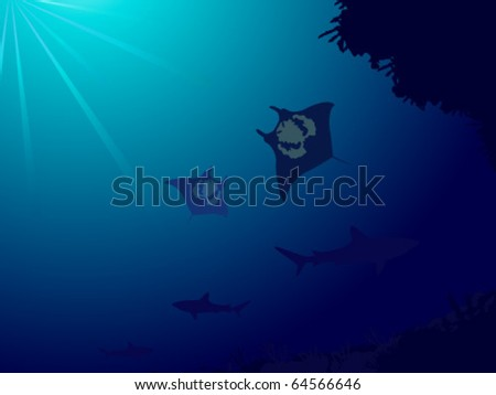 Underwater world with coral reef, sharks and manta ray