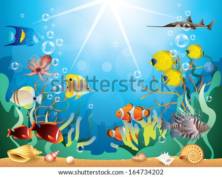 underwater world with reefs and