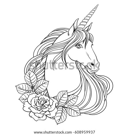 unicorn and roses  hand drawn