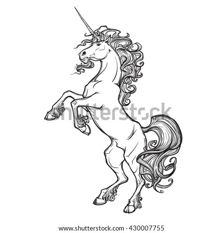 unicorn standing on its hind