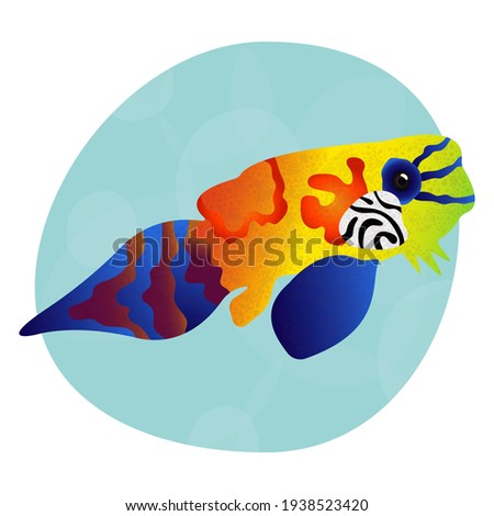 Unique and unusual bright tropical mandarinfish. Sea fish with colorful decoration. Cool print for clothes, cups, plates, goods. Sea world. Logo for seafood, fish restaurant, pet store. Element design