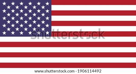 United States flag national emblem graphic element Illustration template design