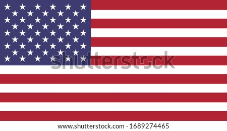 United States of America flag - USA - vector illustration