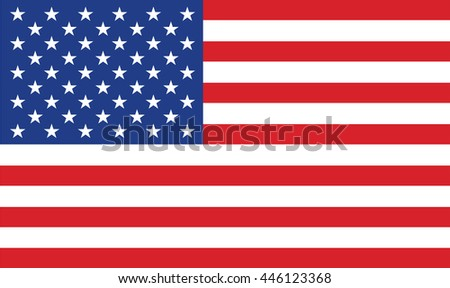 United States of America flag vector illustration. #446123368