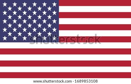 Unites States of America Flag. Flat Vector US flag.
