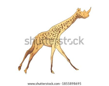 Unusual mixture of animals. Giraffe with a rhinoceros head. Hybrids species sketch. Fantasy art. Vector illustration clip art.