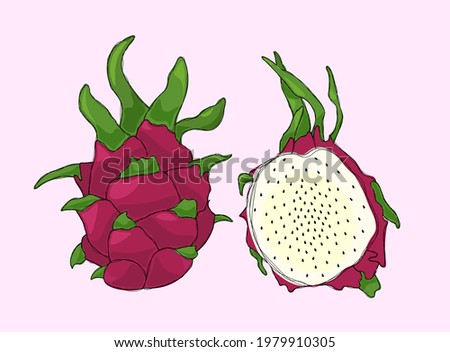 Unusual Pink Dragon Fruit Set