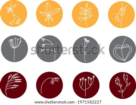 Unusual plant, icon illustration, vector on white background