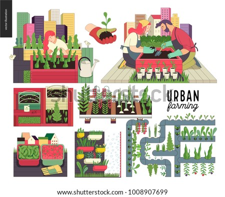Urban farming, gardening or agriculture set. Planting, harvest, wooden seedbeds, planting on rails, vertical farming and hydroponics