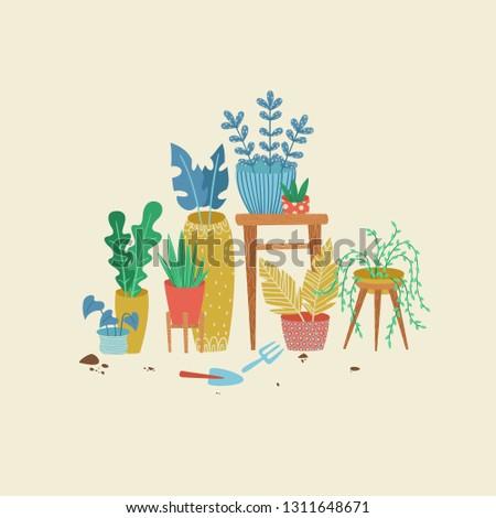 Urban jungle, replanting, gardening concept. Scandinavian ligestyle. House or indoor plants vector illustration.