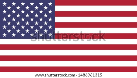 US United States of America Flag Vector - American  Flag Vector