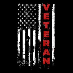 US Veteran. USA Army Flag. Military Patriotic Symbol.  Veterans Day  Illustration Grunge Design.
