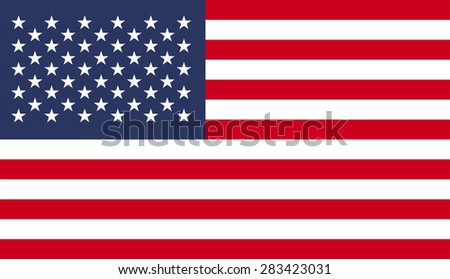 USA flag pattern background.Vector EPS10