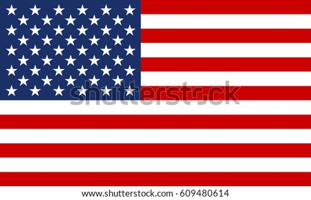 USA flag. United States of America national symbol. Vector illustration.