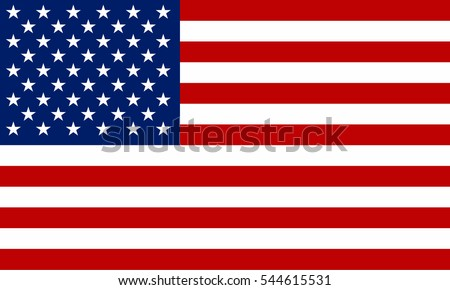 usa flag vector image of usa