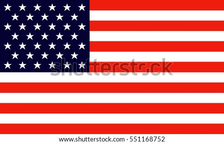 USA vector Flag