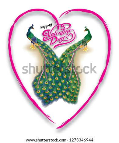 Valentine peacock couples mean love lasting background love heart