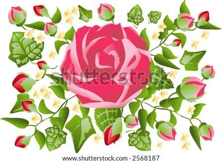 Valentine Rose Pattern