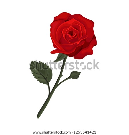 valentine s day card red roses