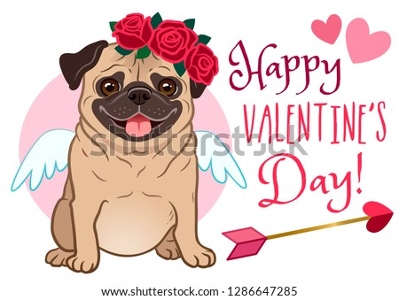 57195051 Valentine's day pug dog pet greeting card. Cute funny pug in love, dressed  as