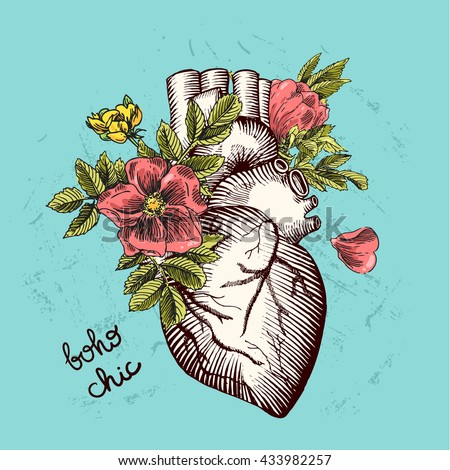 valentines day card anatomical