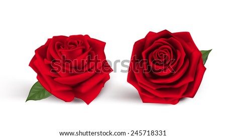 stock-vector-valentines-day-sweet-red-roses-mesh-vector-illustration