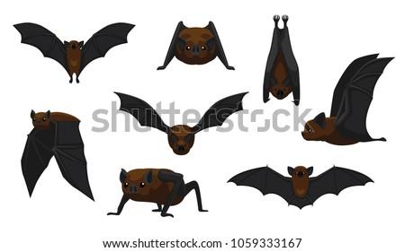 Vampire Bat Flying Cartoon Vector Illustration