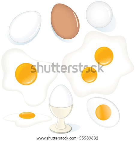 Variety Eggs. vector set of Fresh, Fried, Raw, Boiled Chicken Eggs.