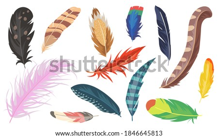 Variety of colorful feathers flat item set. Cartoon shiny ostrich, pheasant and parrot isolated vector illustration collection. Bird feather and decoration concept