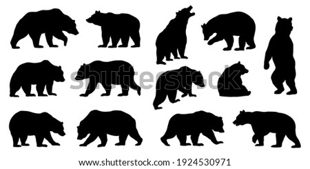 various bear silhouettes on the white background