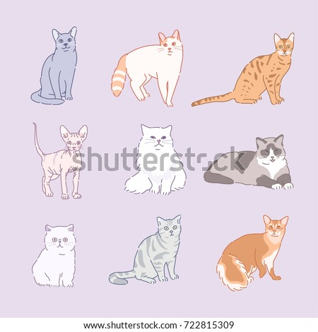 various cat breeds line drawing