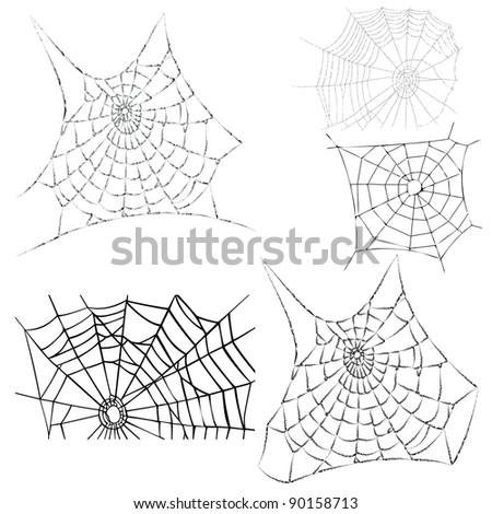 various cobwebs - spider webs - vector