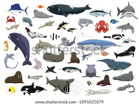 Stock Photo Various Cute Sea Animals Cartoon Vector Illustration