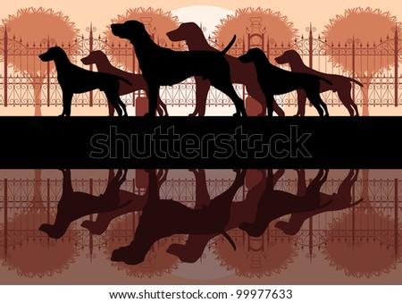 Various dog breeds detailed silhouettes in vintage dog park landscape background illustration vector