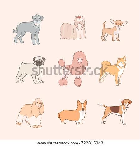 various dog breeds line drawing vector illustration flat design