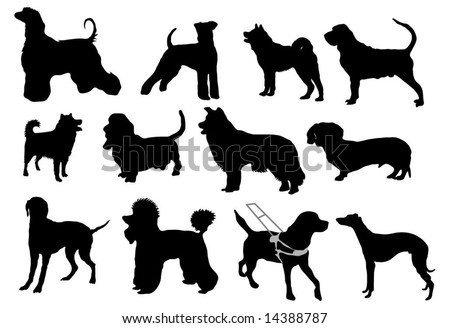 Various dog breeds - silhouettes