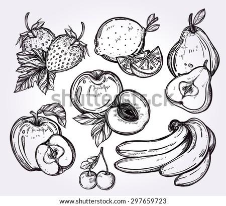 various fruits set vintage