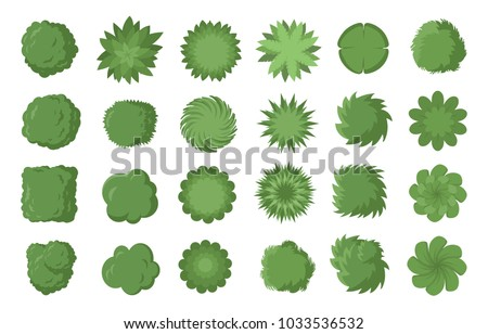 various green trees  bushes and