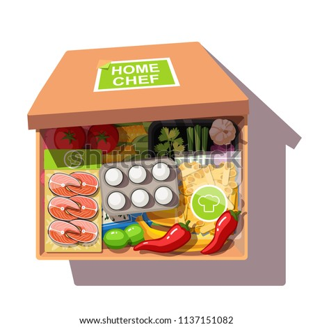 Various ingredients meal kit in open cardboard box. Portioned fish steaks, vegetables, eggs, pasta. Meal kit delivery service. Self made home chef food. Flat vector illustration isolated on white