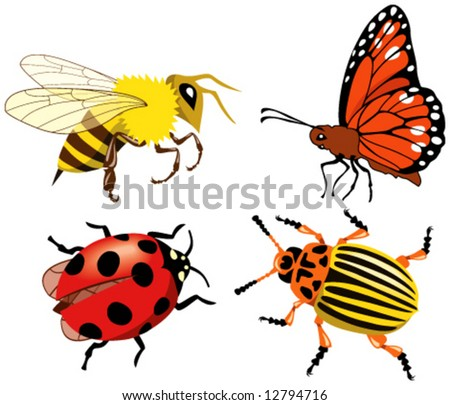 Various insects. Vector illustration.