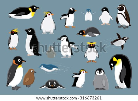 various penguins cartoon vector