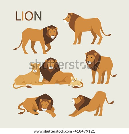 various poses of a lion vector