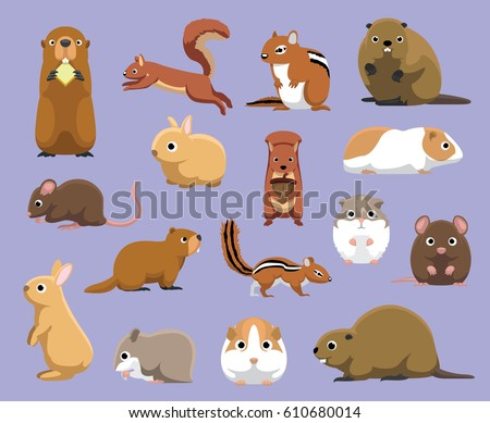 various rodents cartoon vector