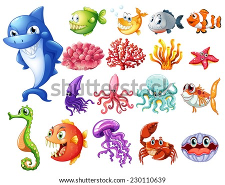 various sea creatures on white